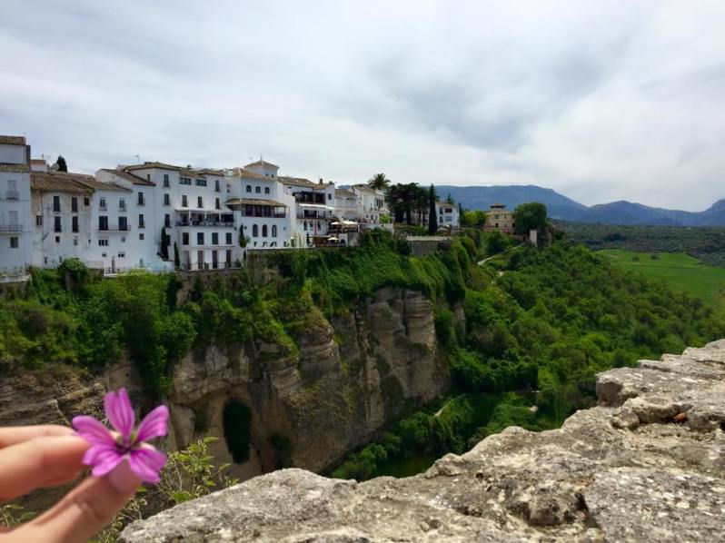Canyon view in Ronda Spain